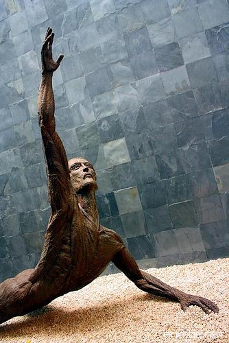 museo-arte-salvador.jpg